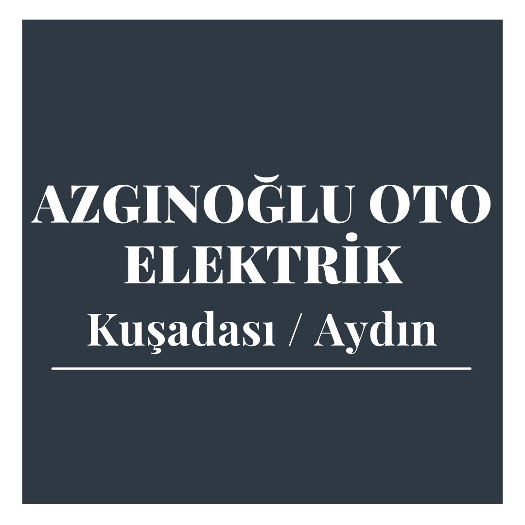 Azgınoğlu Oto Elektrik - Aydın