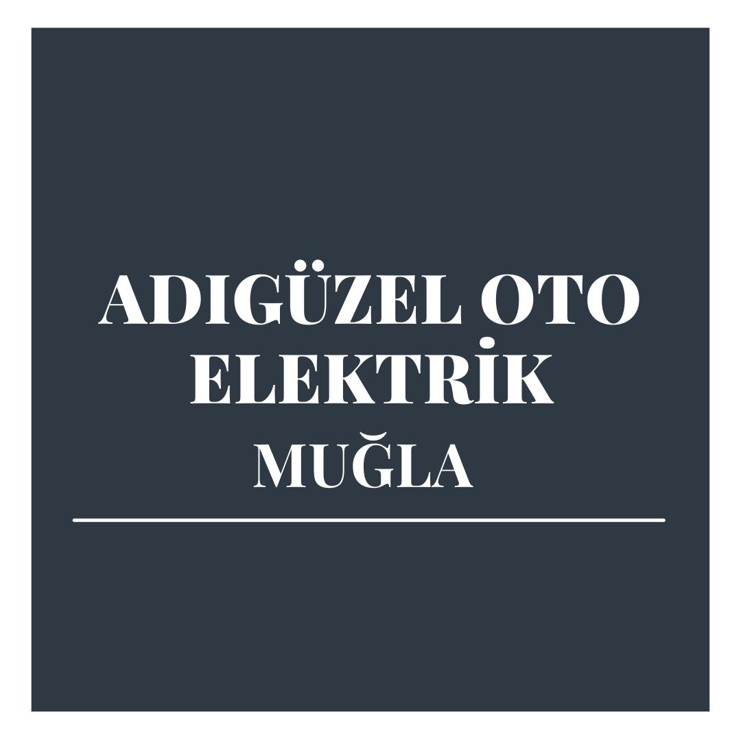 Adıgüzel Oto Elektrik - Muğla